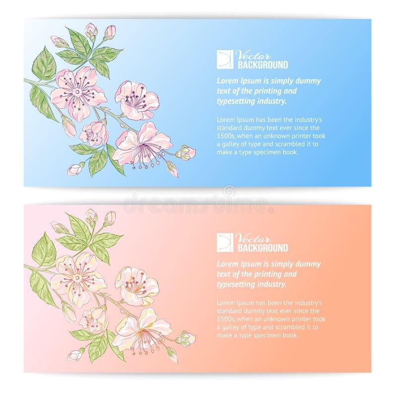 Dwa Sakura sztandaru royalty ilustracja