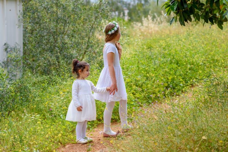 Dwa siostrzanej dziewczyny bawić się wpólnie na zielenieją parkowy plenerowego zdjęcia royalty free