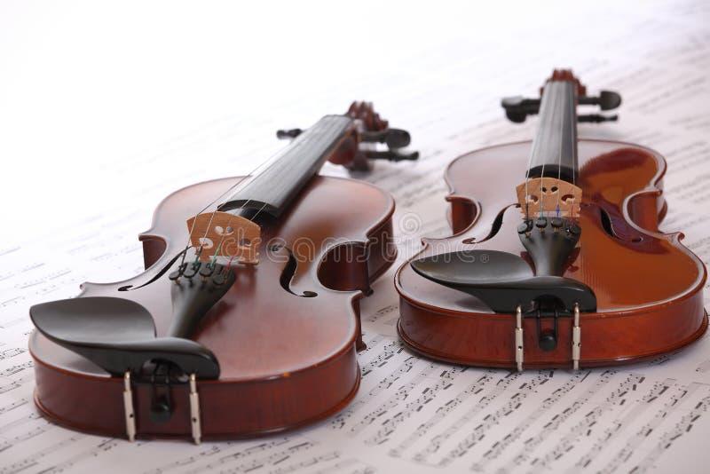 dwa skrzypce zdjęcie royalty free