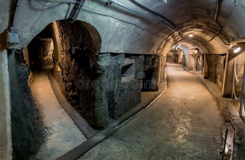 Dwa sposobów ścieżka w tunelu obraz stock