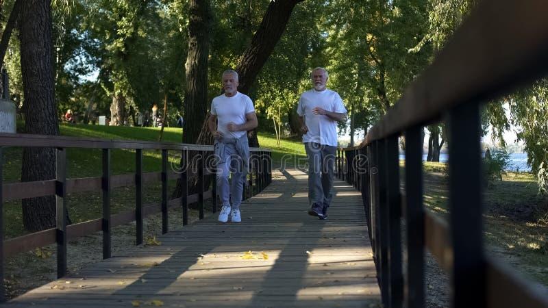 Dwa starszego przyjaciela jogging ranku parka wp?lnie, zdrowy styl ?ycia, aktywno?? zdjęcia royalty free