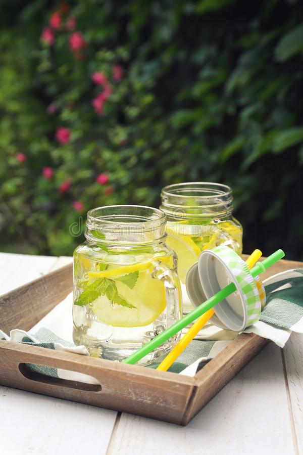 Dwa szkła chłodno czysta woda z cytryną i mennicą w ogródzie obraz royalty free