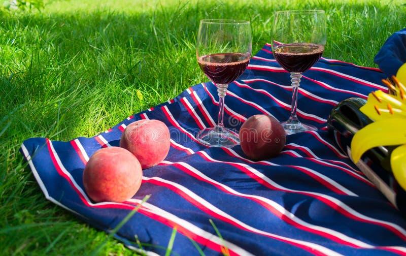 Dwa szkła czerwone wino, na tle trawa Pojęcie romantyczny pinkin w naturze obrazy royalty free