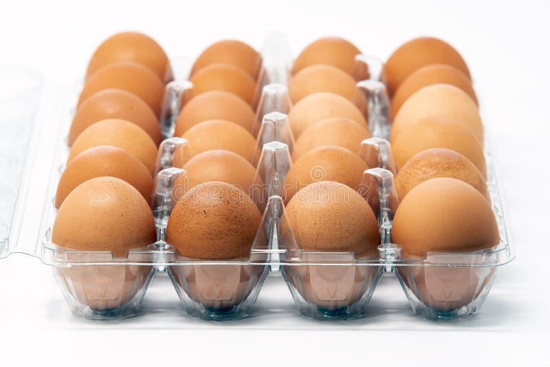 Dwa tuzin brown organicznie bezpłatni jajka obraz royalty free