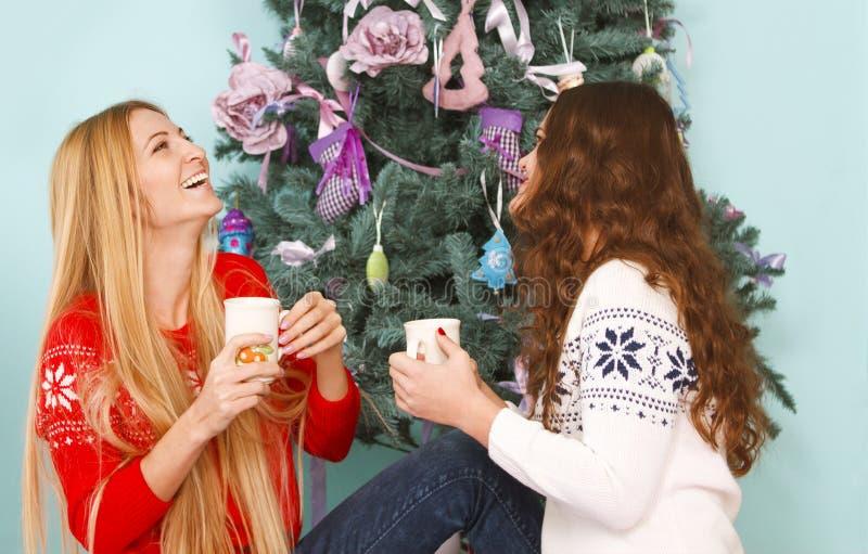 Dwa uśmiechniętego żeńskiego przyjaciela choinką zdjęcia stock