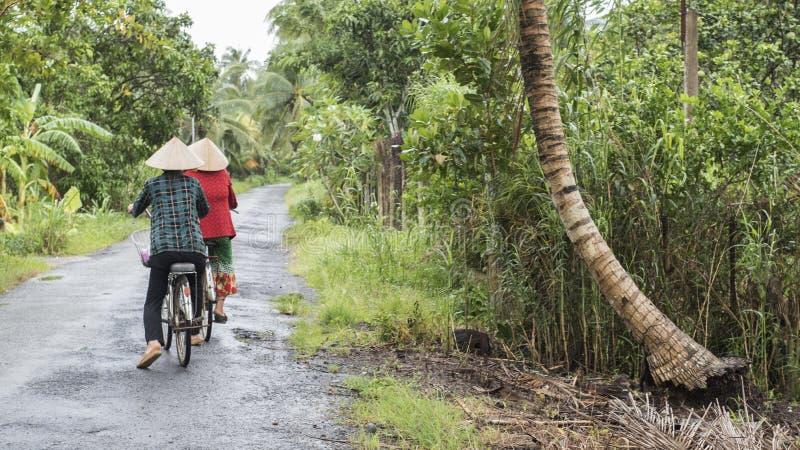 Dwa Wietnamskiej kobiety jadą ich bicykle na wsi drodze w Mekong delcie zdjęcia royalty free