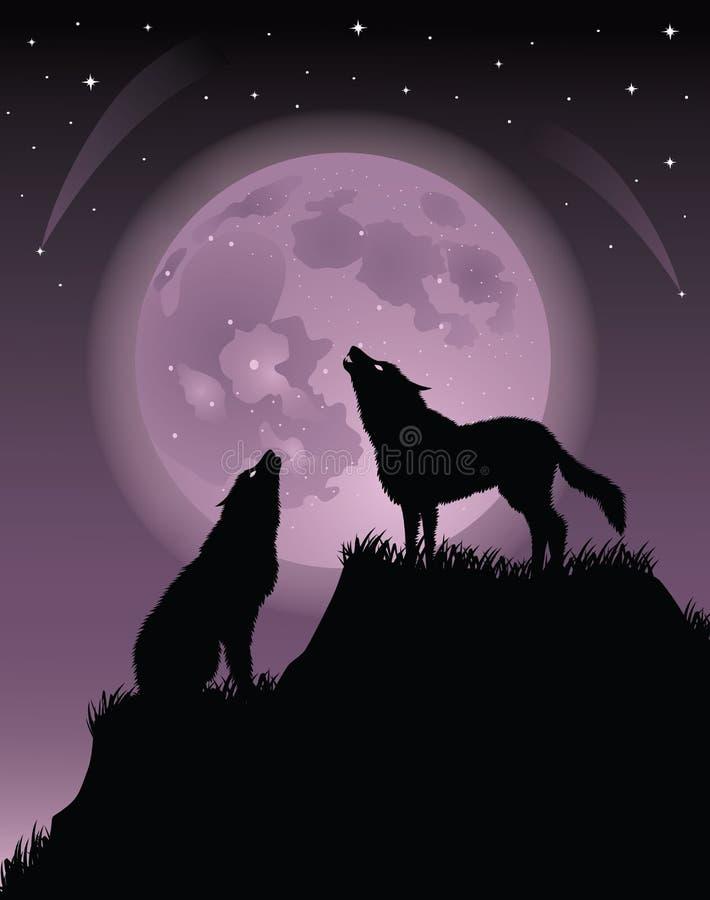 dwa wolfs royalty ilustracja