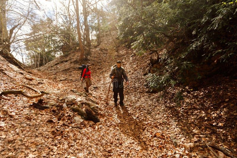 Dwa wycieczkowicza chodzi w dół góry w jesień krajobrazie Kilka turyści pochodzi górę zdjęcie stock