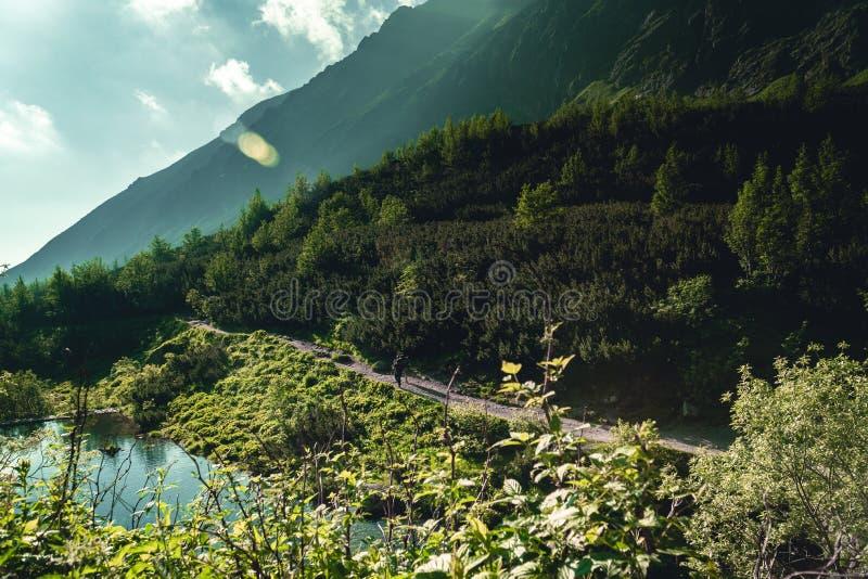Dwa wycieczkowicza w Wysokich Tatras górach podczas wschód słońca zdjęcia stock