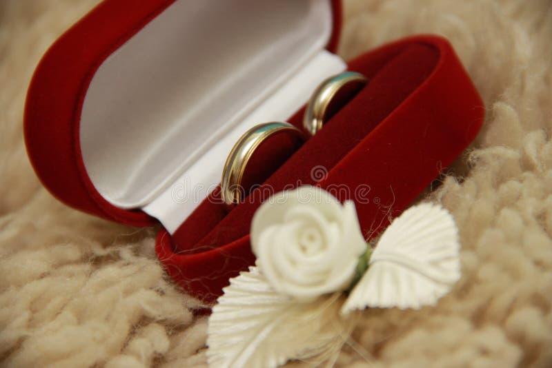 Dwa złocistego pierścionku w czerwieni pudełku z obraz royalty free