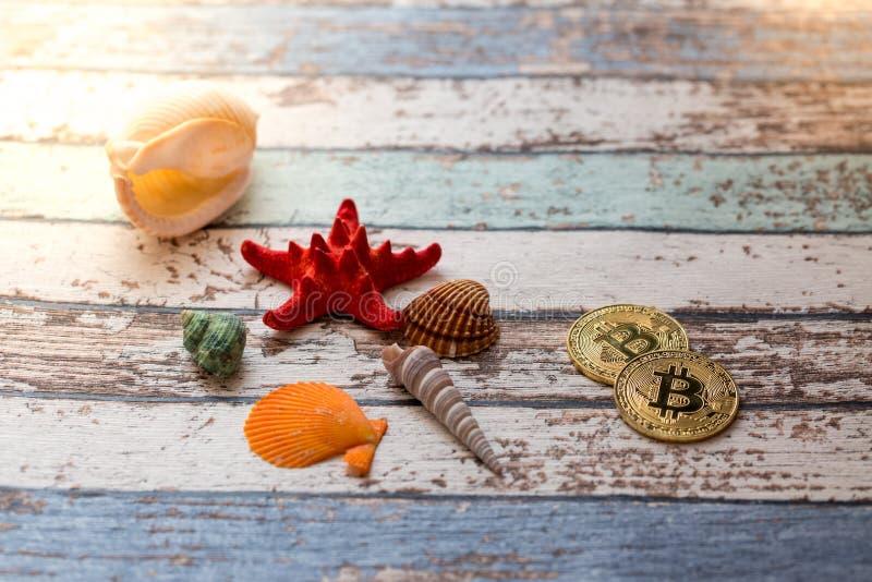 Dwa złotego bitcoins z seashells i rozgwiazda na rocznika stole obrazy royalty free