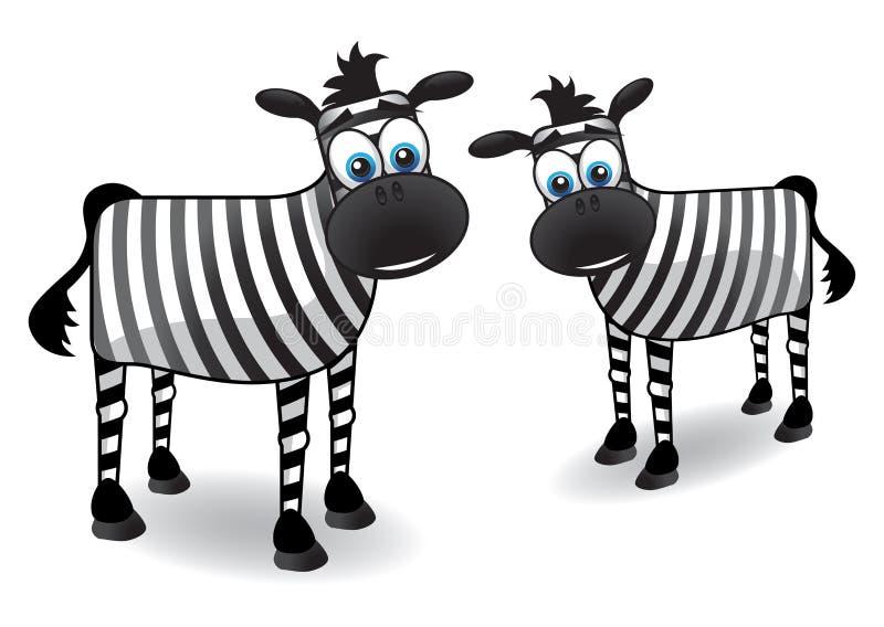 dwa zebra