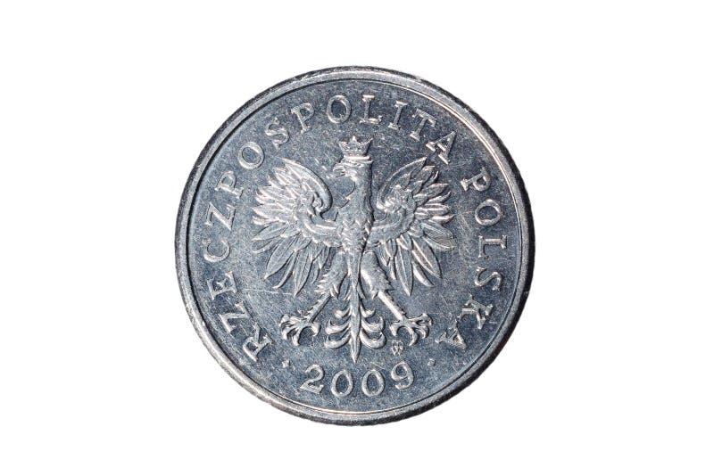 Dwadzieścia groszy polerujący złoty Waluta Polska Makro- fotografia moneta Polska przedstawia połysk groszy monetę obrazy stock