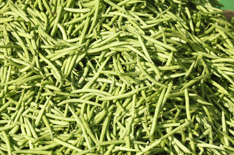 Dwarf beans. Green fresh dwarf beans on a market stall royalty free stock photos