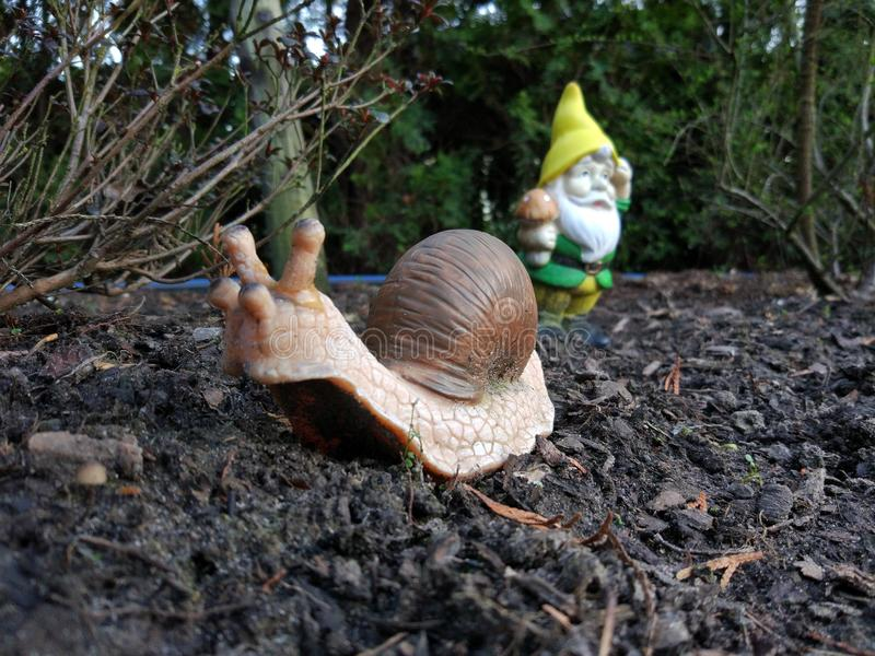 Dwarf an snail stock images