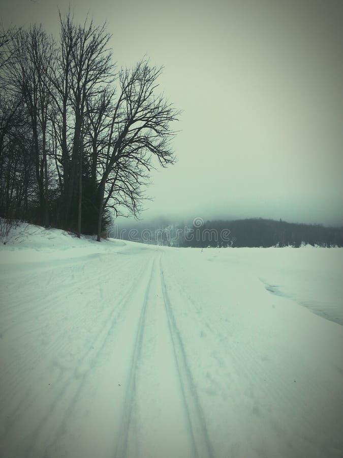 Dwars de skispoor van het land in aard stock foto's