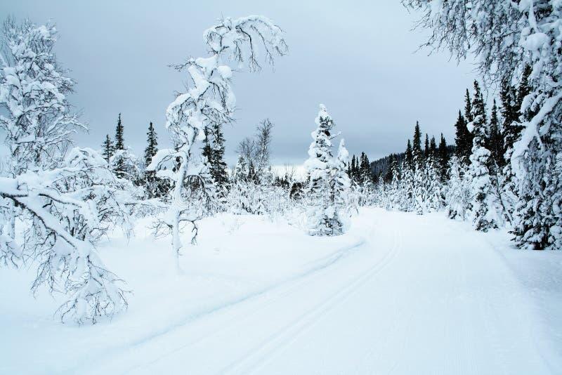 Dwars land het skiån sleep 3 royalty-vrije stock afbeelding
