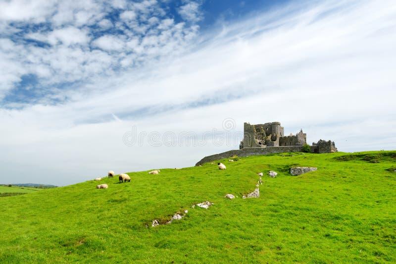 Dwayne Johnson di Cashel, un sito storico situato a Cashel, contea Tipperary, Irlanda immagini stock libere da diritti