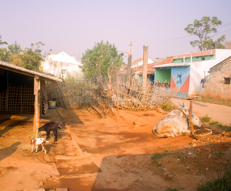 Dwelling in Indian province. stock photography