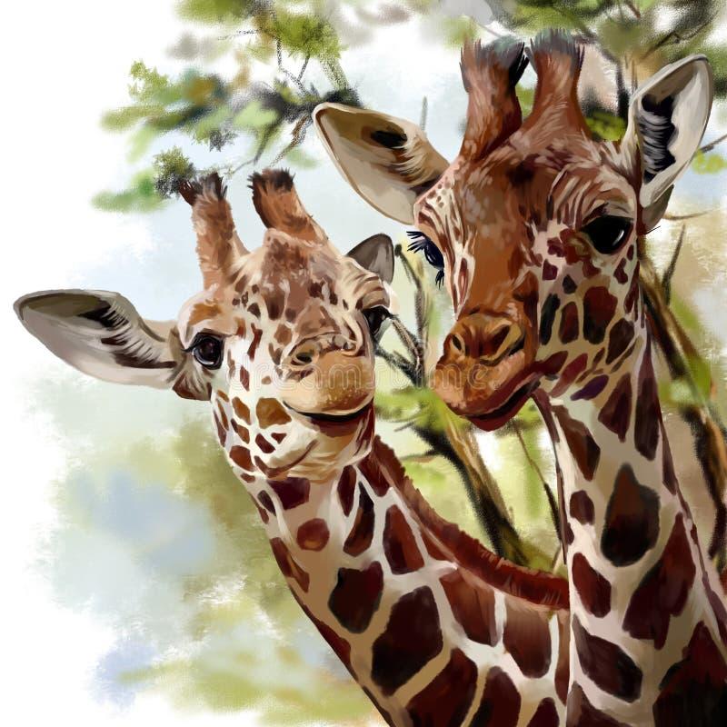 dwie żyrafy ilustracja wektor