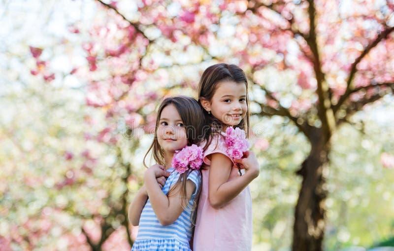 Dwie małe dziewczynki stojące na dworze w naturze wiosennych, patrzące na kamerę obraz stock