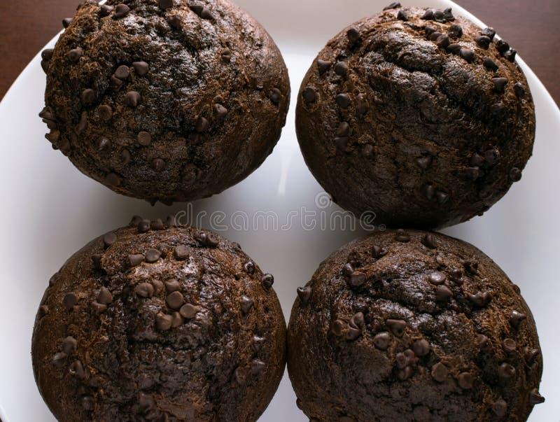Dwoiści czekoladowego układu scalonego muffins na bielu talerzu fotografia royalty free