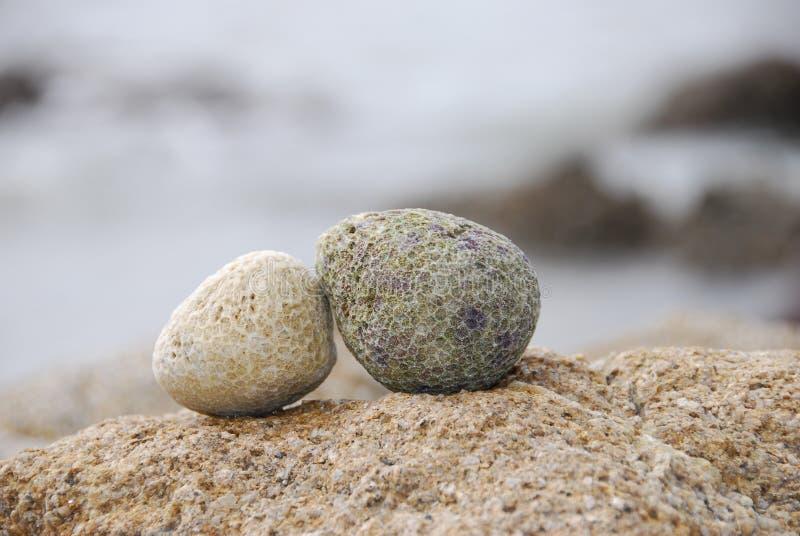 dwoisty kamień zdjęcie royalty free