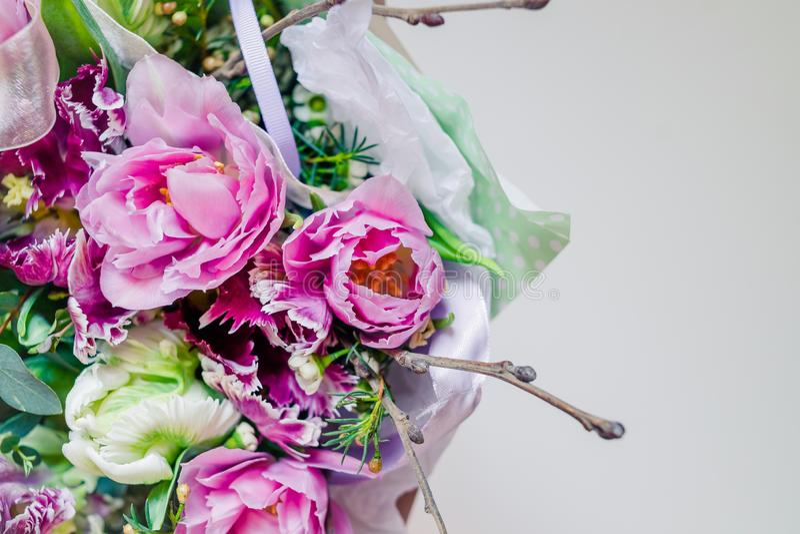 Dwoisty różowy peonia tulipan, Piękny kopii menchii tulipan Drumline Różowa peonia kwitnący dwoisty tulipan Kolorowi kwiaty dla zdjęcie stock