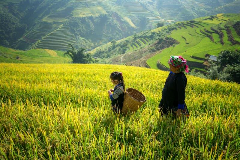 Dwoisty ujawnienie Khon tożsamość która odbija kult i sztukę zdjęcie royalty free