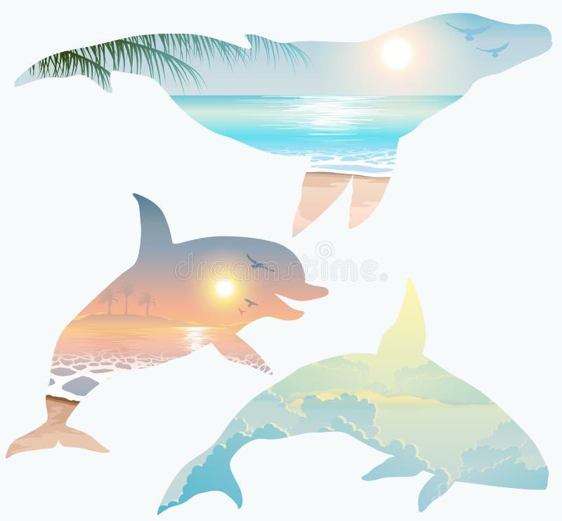 Dwoisty ujawnienie, wieloryb, delfin, przyrody pojęcie ilustracja wektor