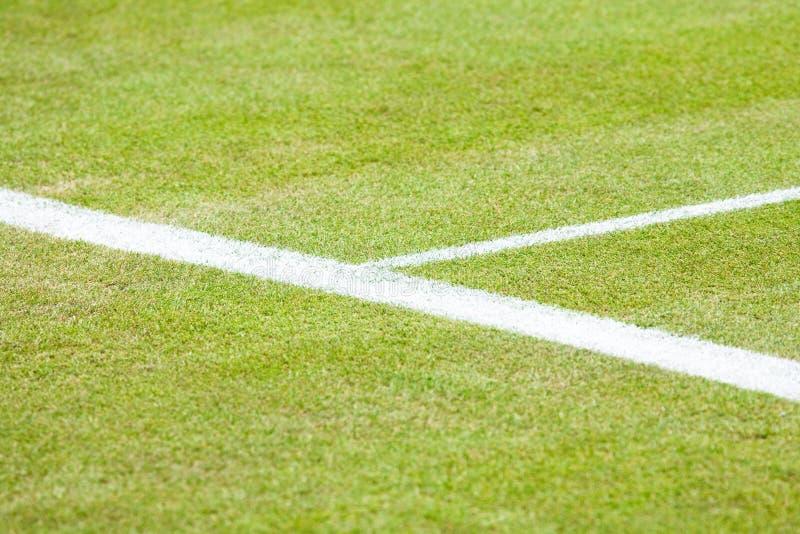 dworski zbliżenie tenis fotografia stock
