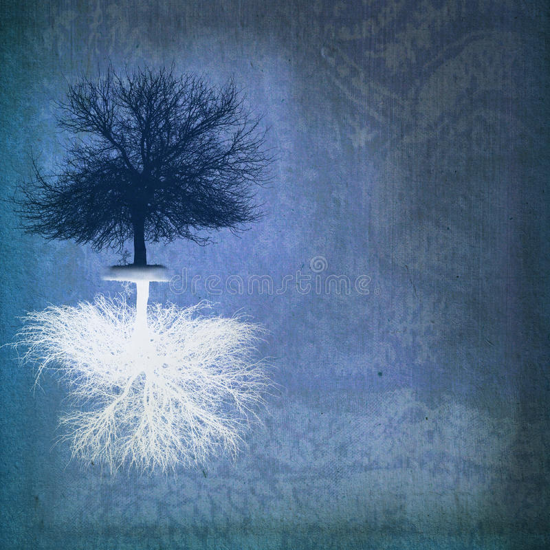 dwubiegunowy drzewo zdjęcia royalty free