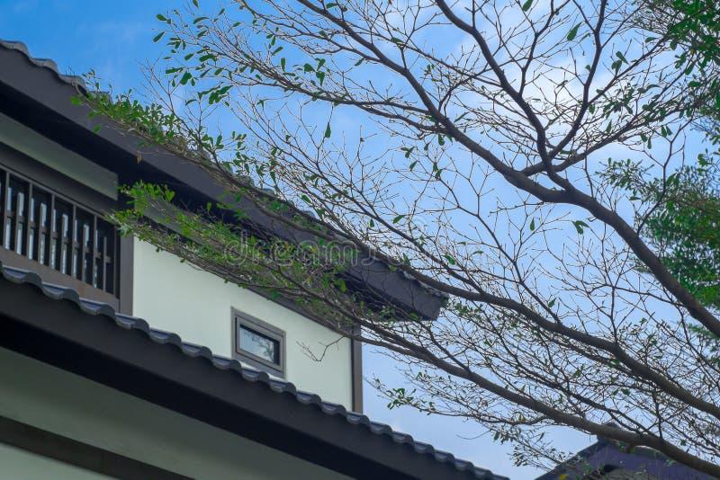 Dwuokapowy dach zdjęcia royalty free