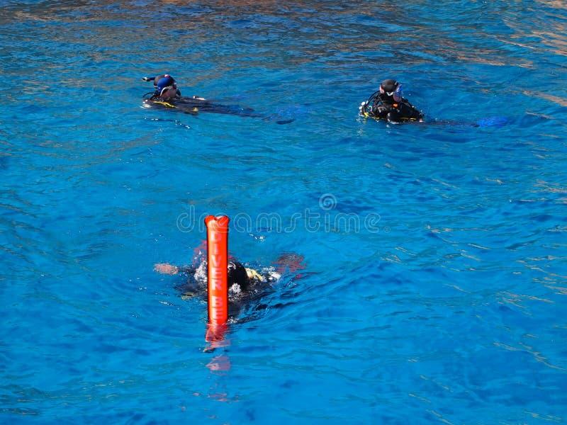 Dyka på det röda havet royaltyfri foto