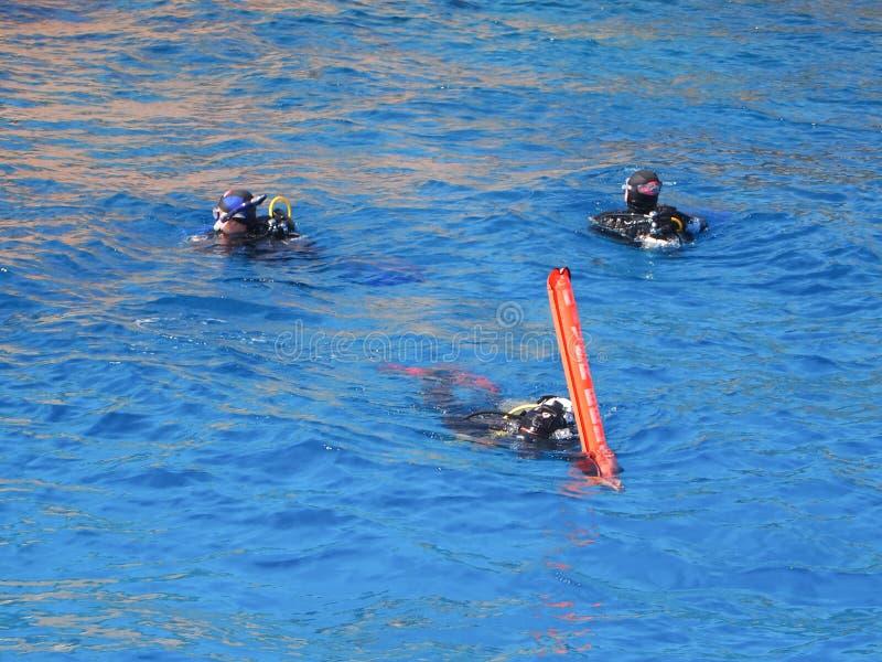 Dyka på det röda havet arkivfoto