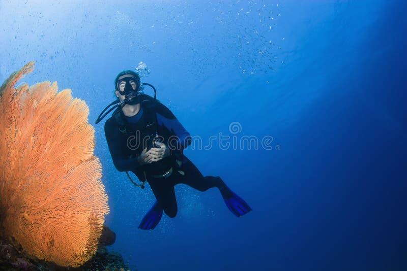 Dykapparatdykning i Thailand royaltyfri foto