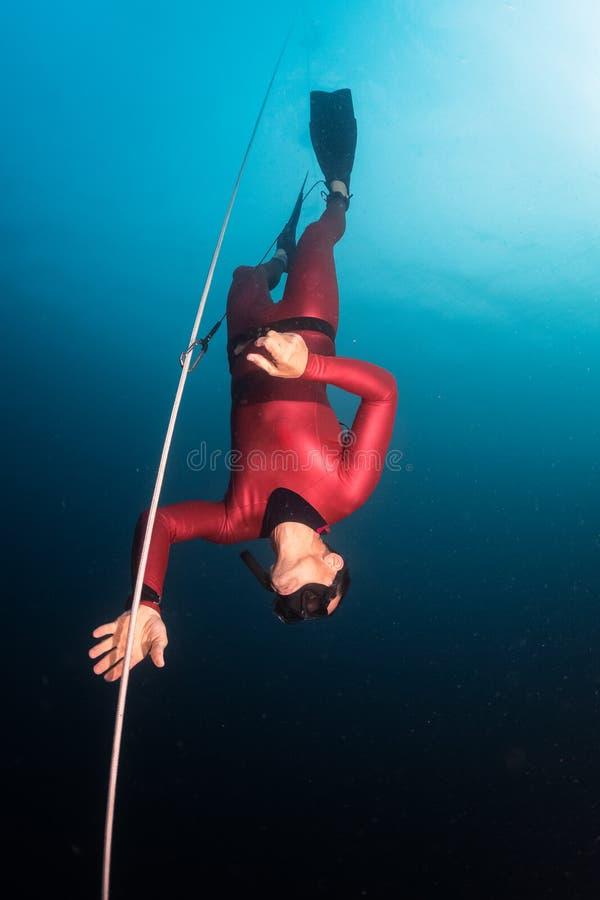 dykare frigör arkivbilder