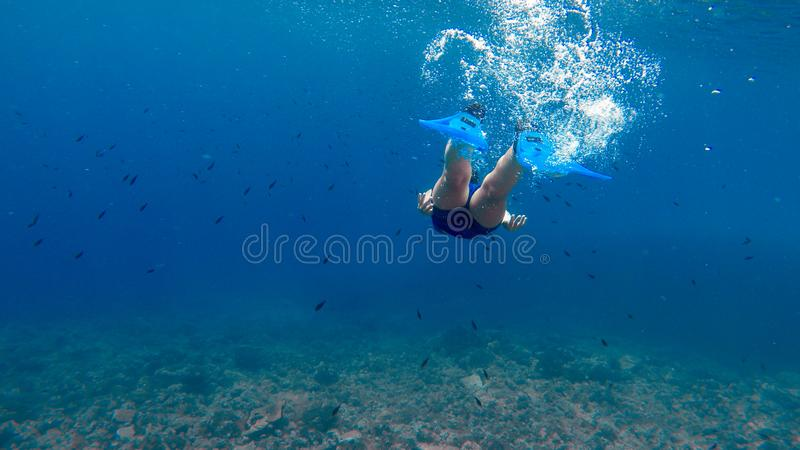 Dykare Girl - undervattens- plats arkivfoton