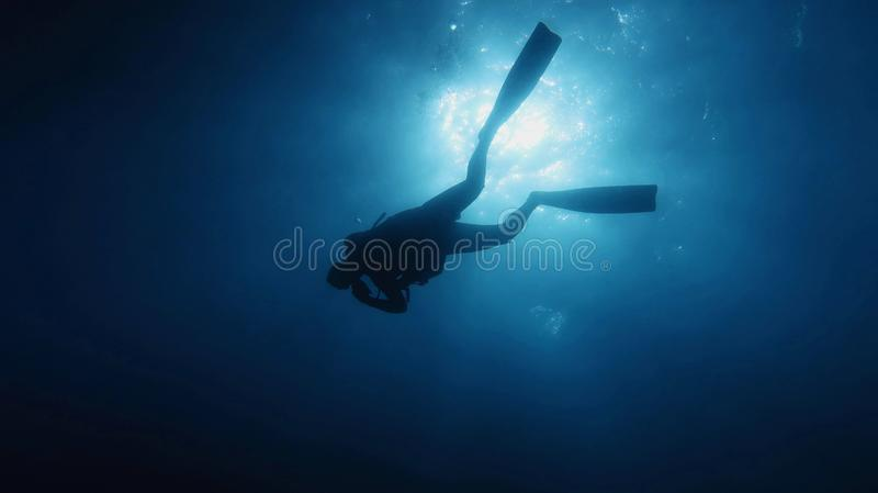 Dykare i det blåa vattnet som in stiger ned till djupet arkivbilder