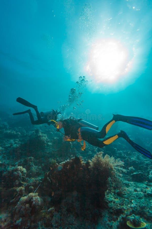 Dykare near havsbotten arkivfoton