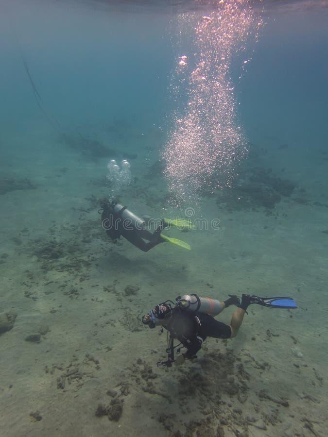 Dykare och deras bubblor i havet på Curacao royaltyfri foto