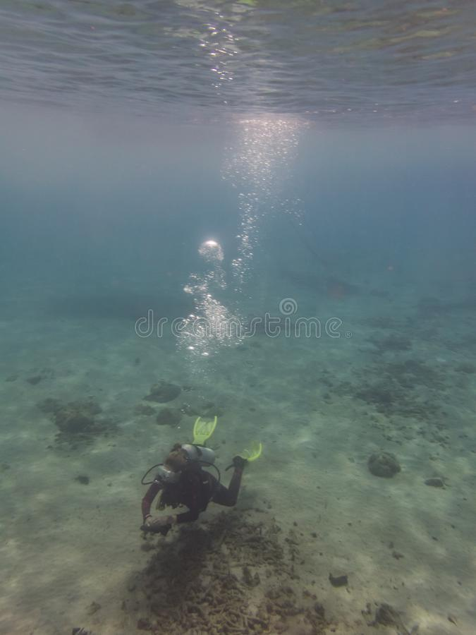 Dykare och deras bubblor i havet på Curacao royaltyfria bilder