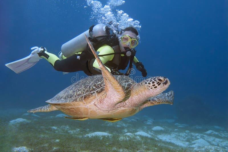 Dykare och sköldpadda arkivfoto