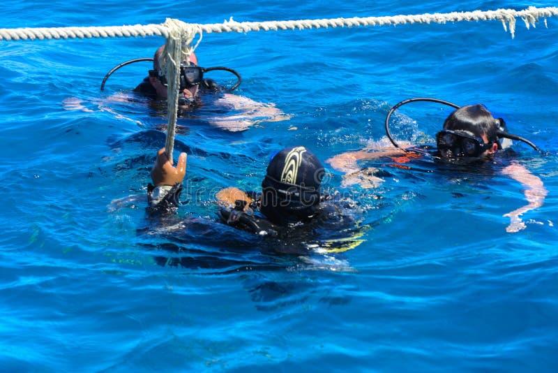 Dykare på det klar och turkosRöda havet på immersion i härliga koraller och färgrik fisk arkivbilder