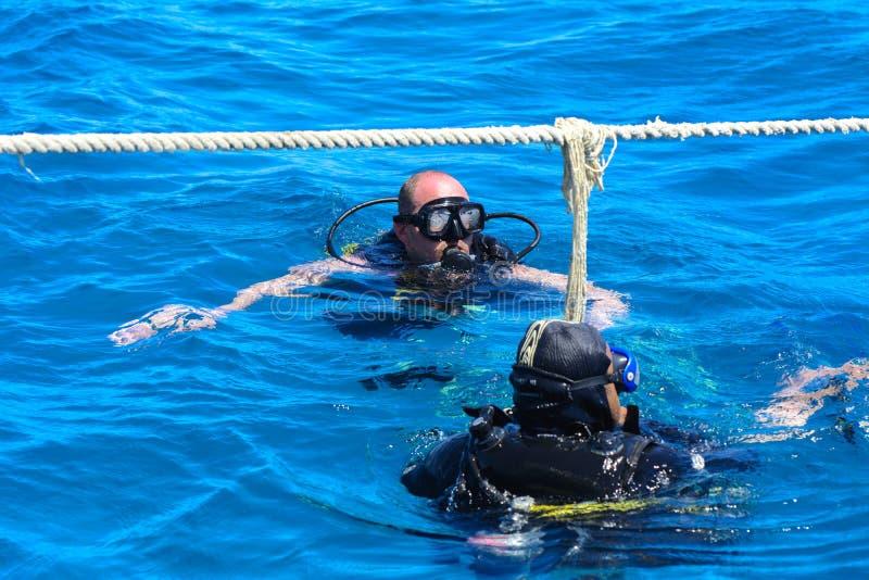 Dykare på det klar och turkosRöda havet på immersion i härliga koraller och färgrik fisk arkivfoto