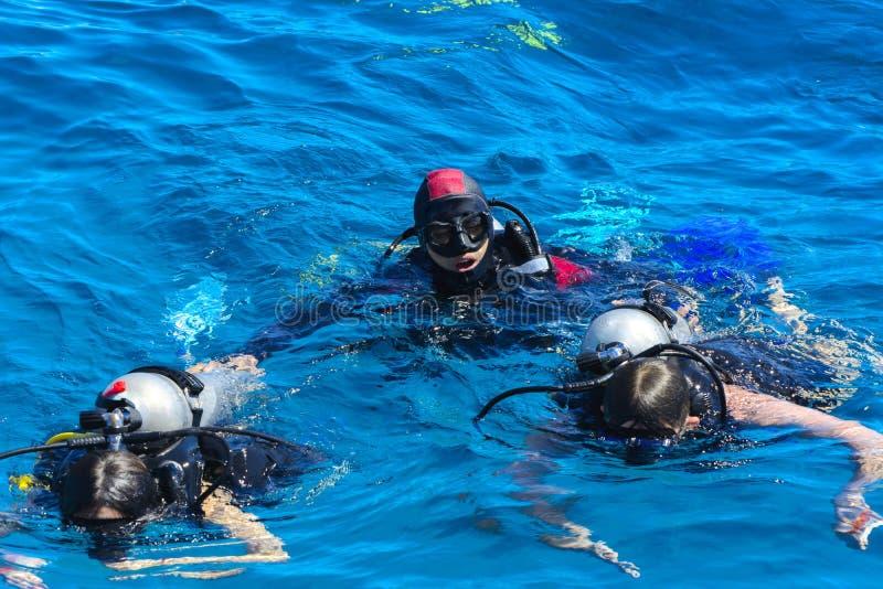 Dykare på det klar och turkosRöda havet på immersion i härliga koraller och färgrik fisk royaltyfri bild