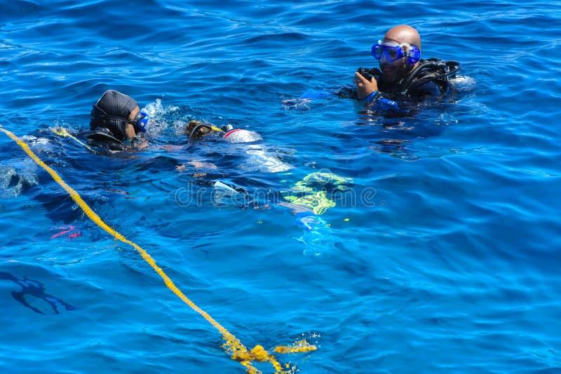 Dykare på det klar och turkosRöda havet på immersion i härliga koraller och färgrik fisk arkivbild