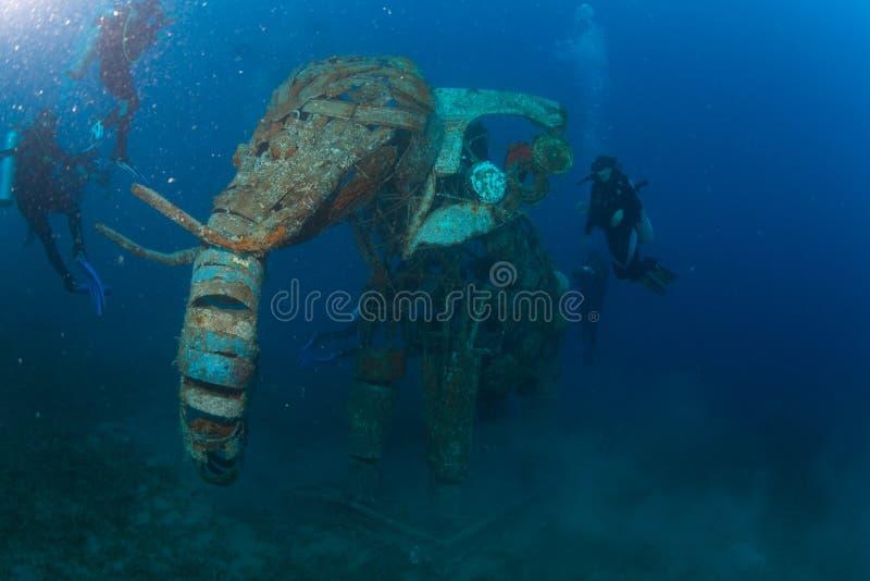 Dykare på reafen arkivfoto