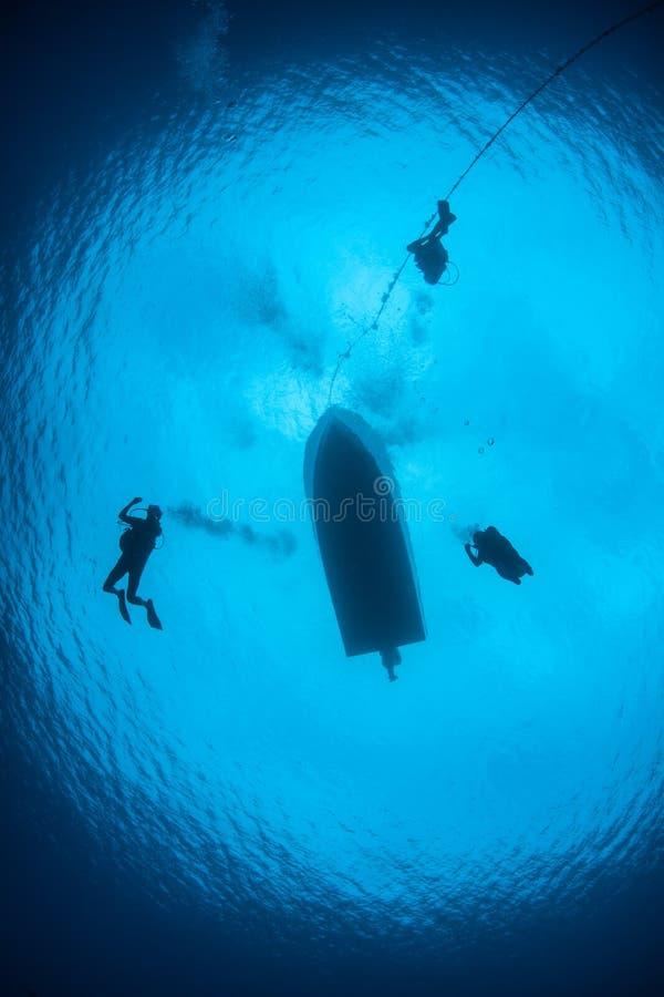 Dykare som stiger ned in i blått vatten royaltyfri fotografi