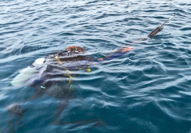 Dykare Swimming i wetsuitneoprenefiskare arkivfoto